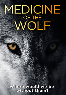 Medicine Of The Wolf: Film Poster - Close up of a wolf's face, one half lit with its striking eye and the right side is shadowed