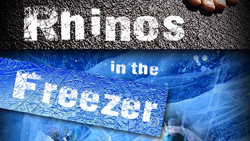 Image in black and blue serves as a link to the Rhinos in the Freezer film page