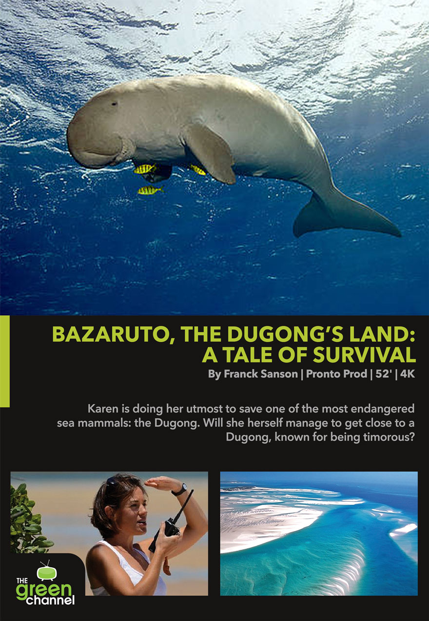 Poster of a Dugong serves as a link to the Bazaruto, The Dugong's Land - A Tale of Survival film page