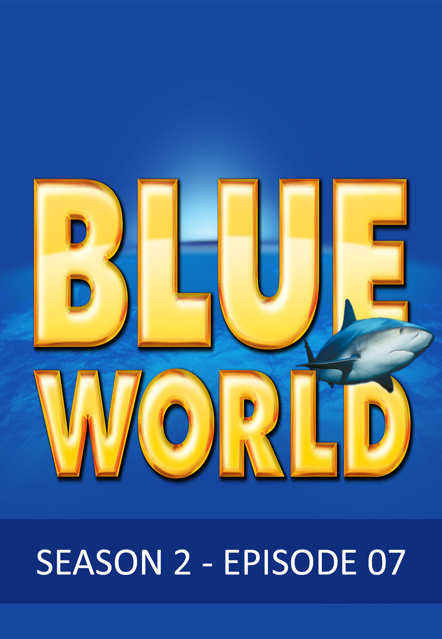 Poster with a shark serves as a link to the Blue World Season 2 Episode 7 film page