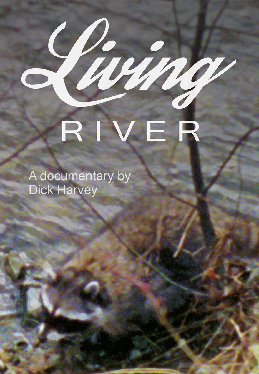 Poster of a raccoon on the shore of a river serves as a link to the Living River film page