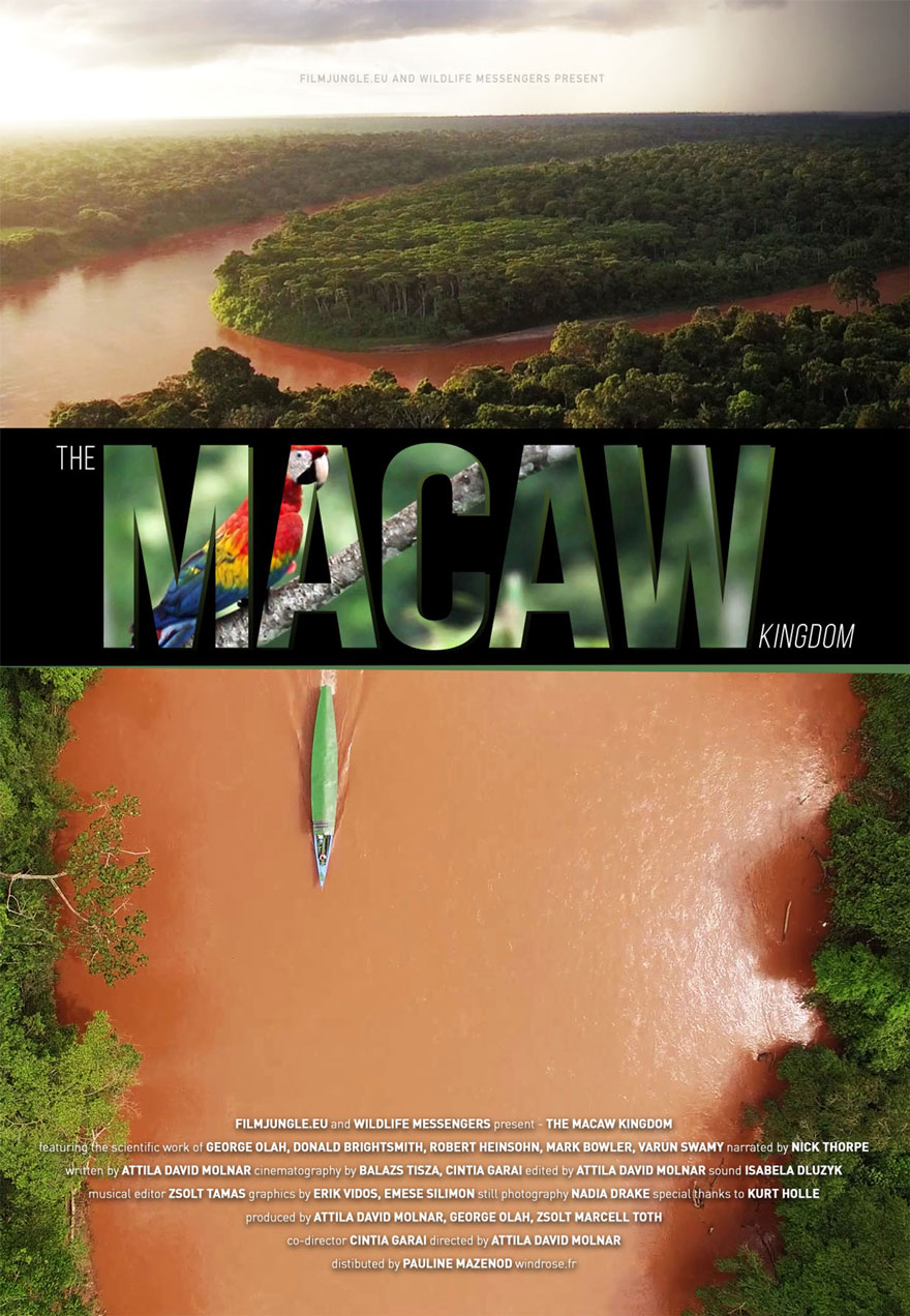 Poster of an aerial view of a tropical forest serves as a link to the Macaw Kingdom film page