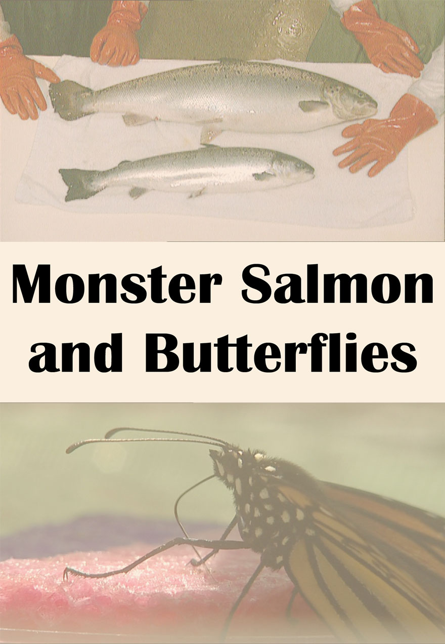 Poster of salmon and butterflies serves as a link to the Monster Salmon and Butterflies film page