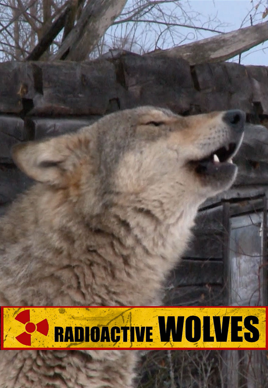Poster of a howling wolf serves as a link to the Radioactive Wolves flm page