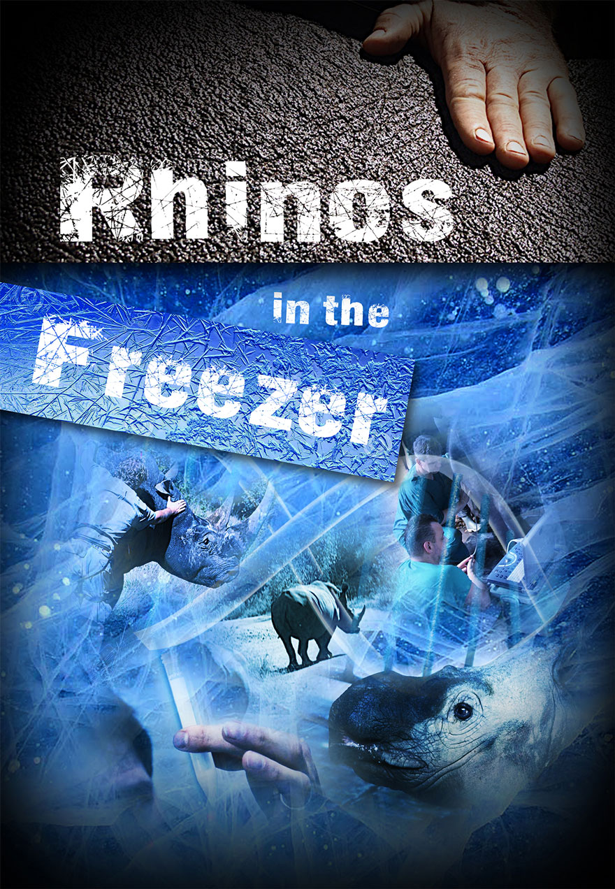 Poster of rhinos and test tubes serves as a link to the Rhinos in the Freezer film page