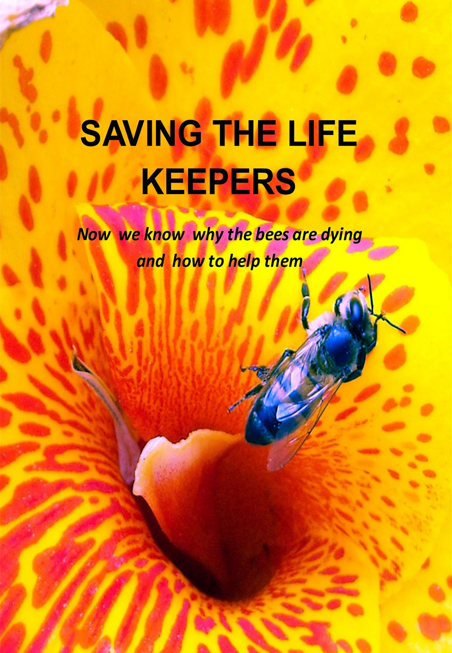 Poster of a bee crawling out of a yellow flower serves as a link to th Saving the Life Keepers film page