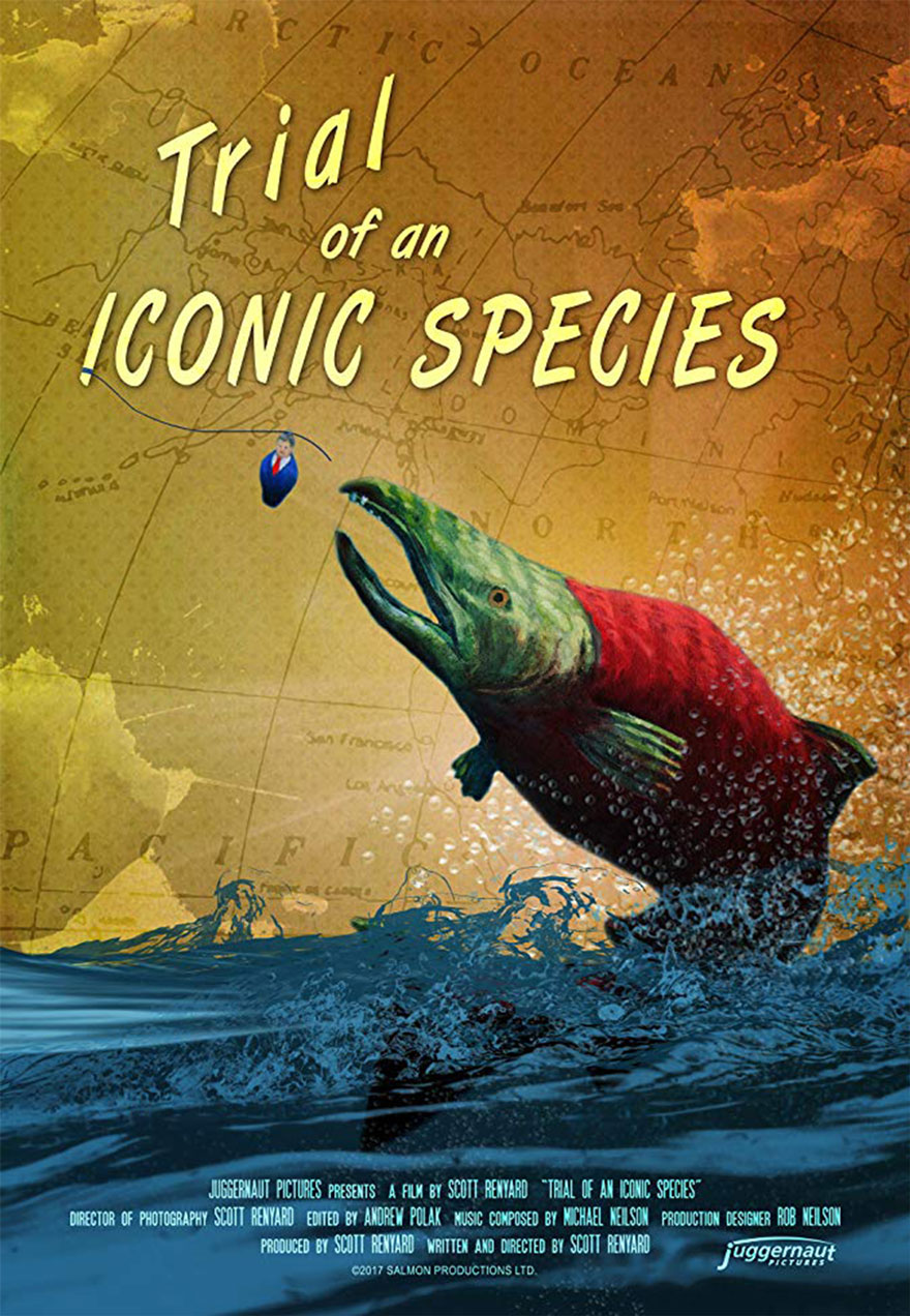 Poster of a leaping sockeye salmon serves as a link to the Trial of An Iconic Species film page