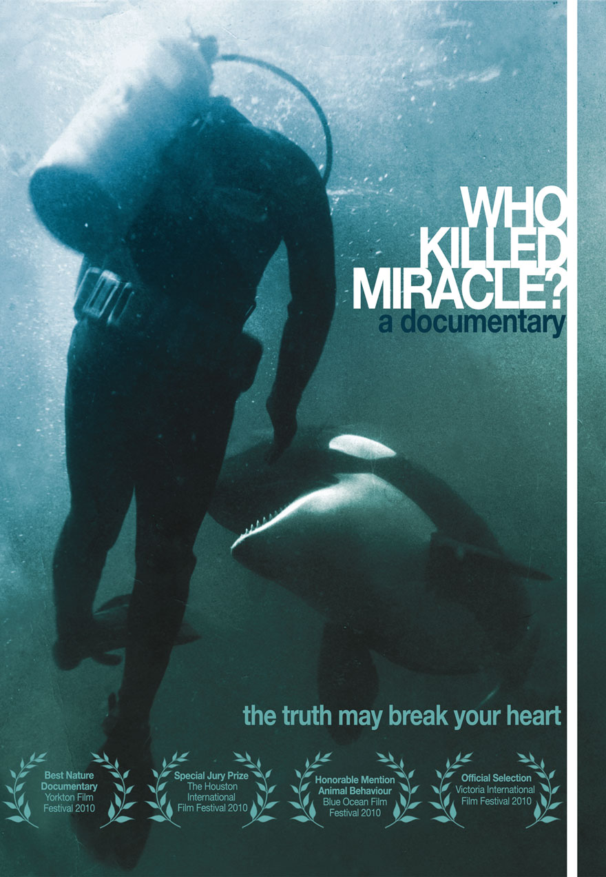 Poster of a kller whale about to bite a diver serves as a link to the Who Killed Miracle film page