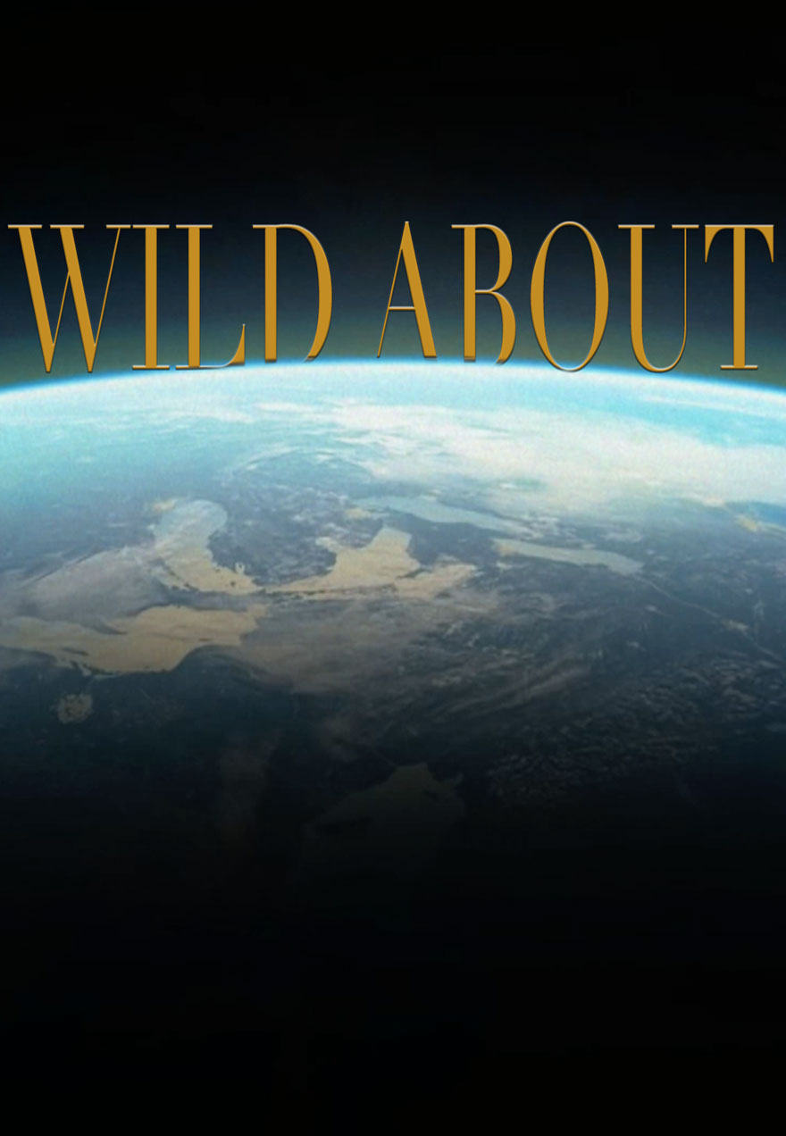 Photo of the earth from space serves as a link to the Wild About series page