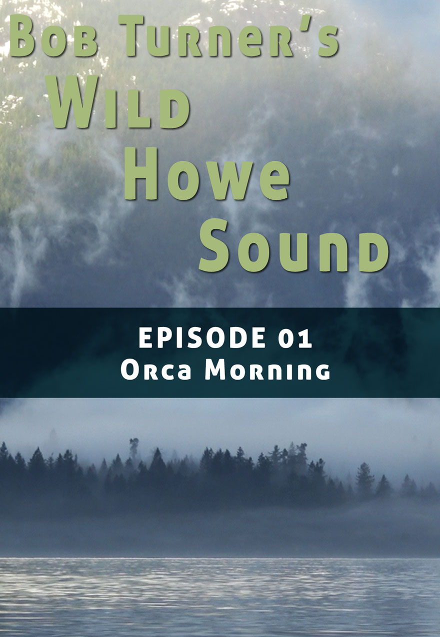 Poster of a misty ocean setting serves as a link to Bob Turner's Wild Howe sound Episode 1 film page