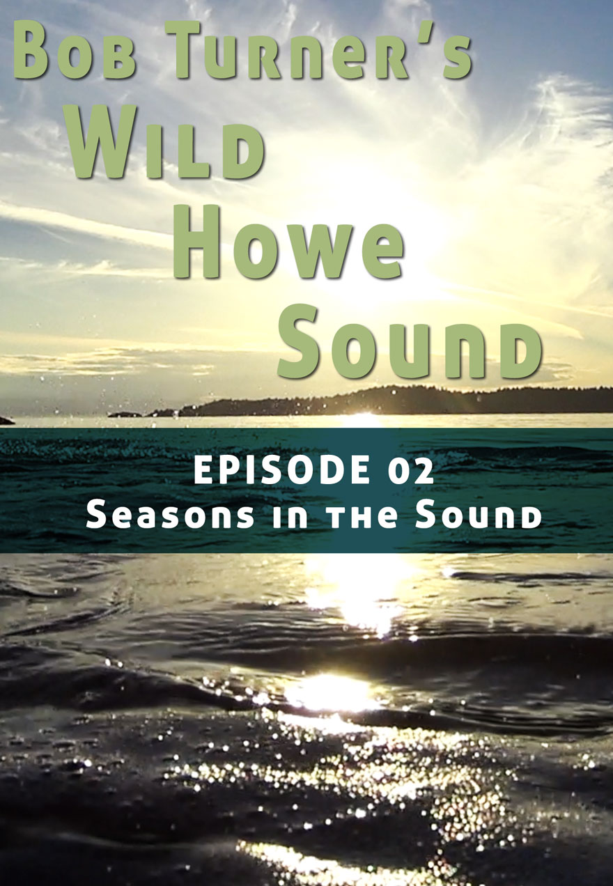 Poster of a sunset serves as a link to Bob Turner's Wild Howe Sound Episode 2 film page