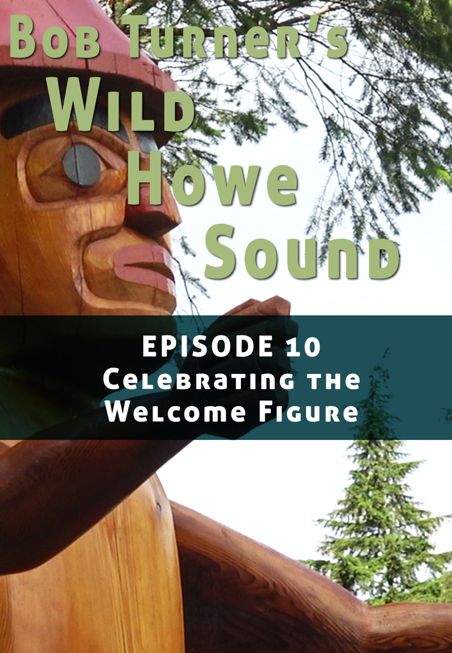 Poster of a totem pole serves as a link to Bob Turner's Wild Howe Sound Episode 10 film page