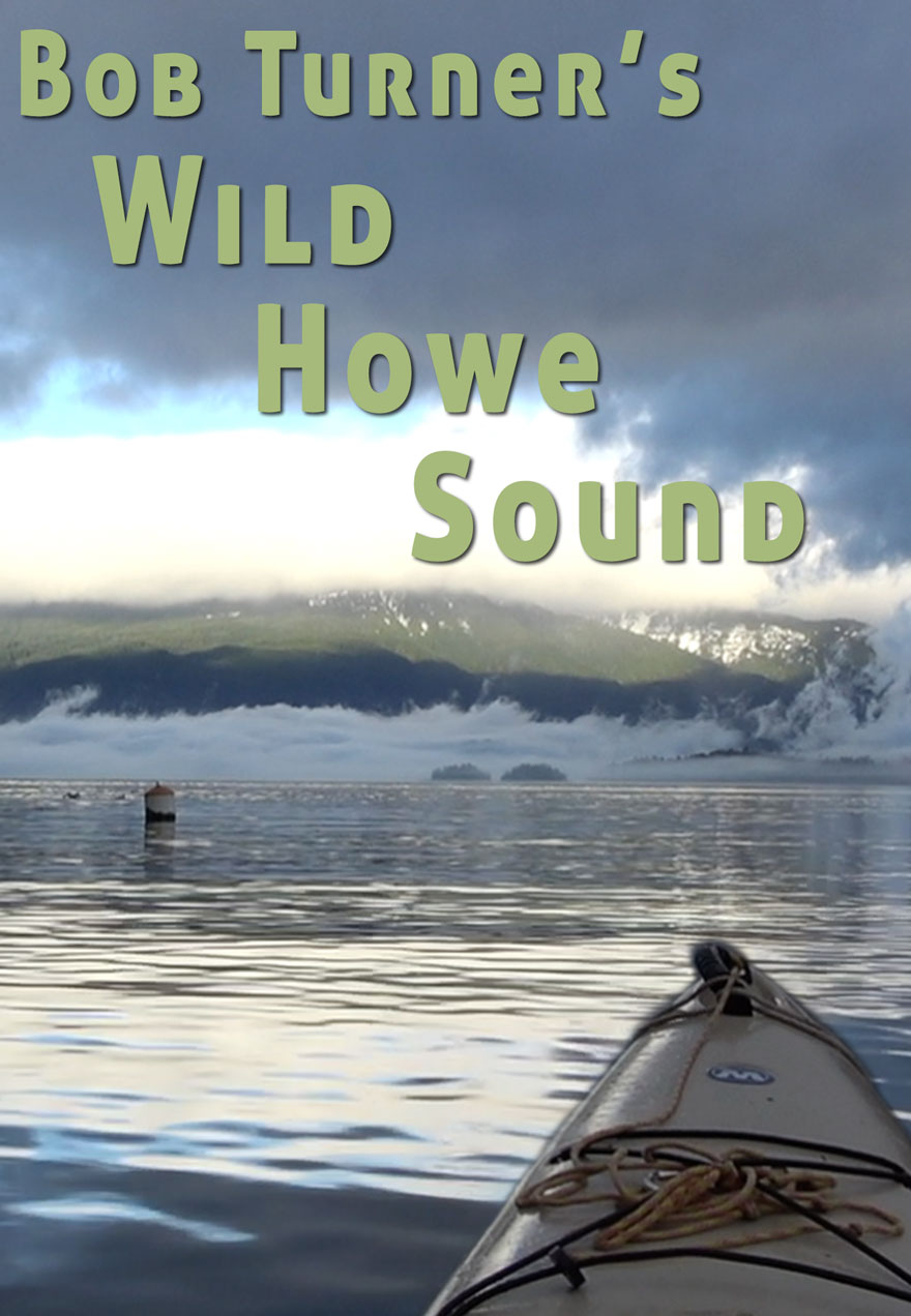 Poster of a calm ocean scene serves as a link to Bob Turner's Wild Howe Sound series page