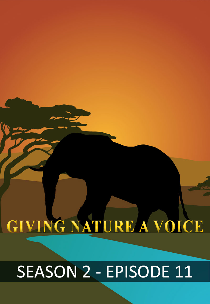 Giving Nature a Voice poster used for the Season 2 - Episode 11 film page
