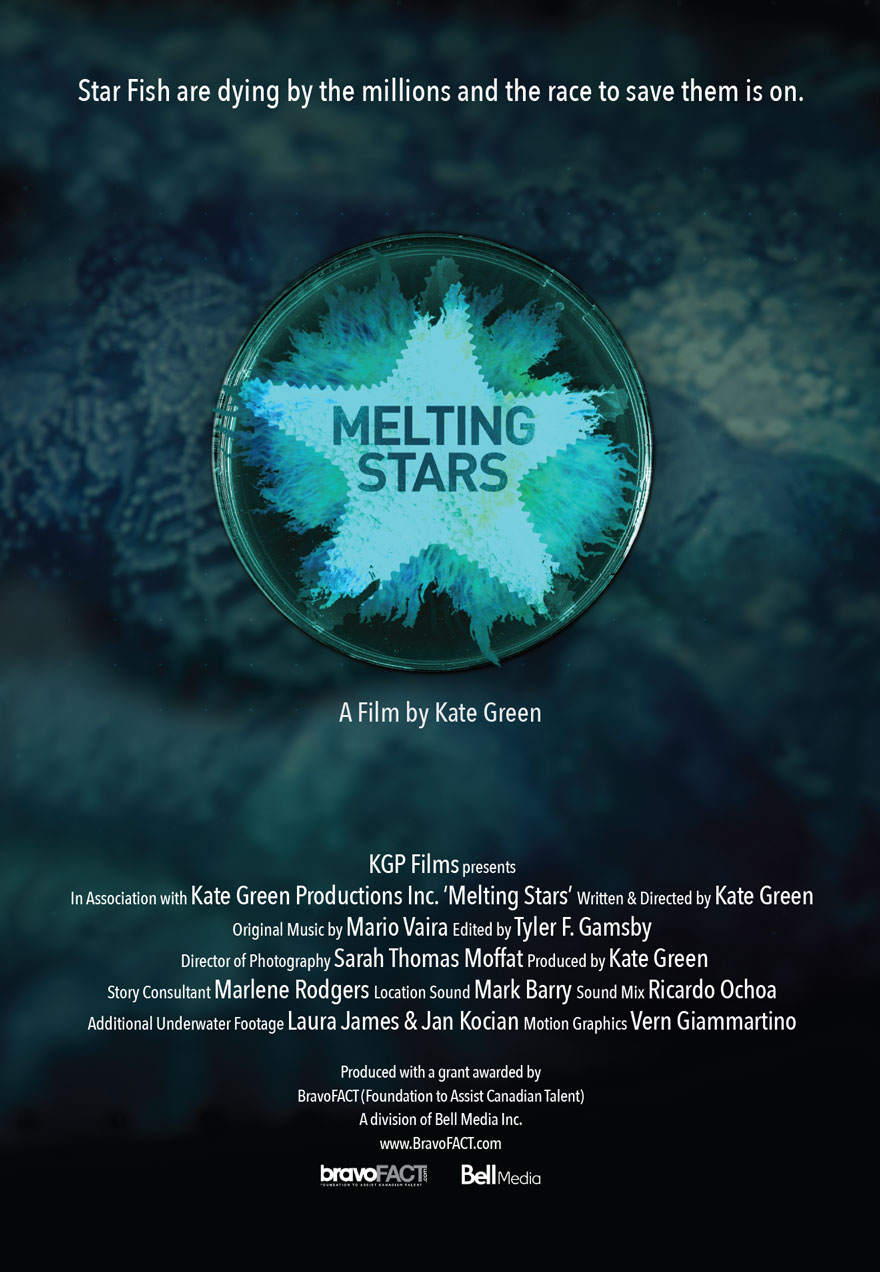 Melting Stars poster acts as a link to the film page