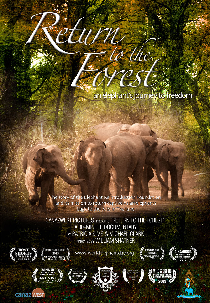 Poster of a family of elephants walking through the forest serves as a link to the Return to the Forest film page
