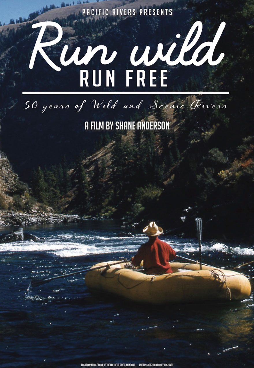 Run Wild Run Free poster acts as a link to the film page