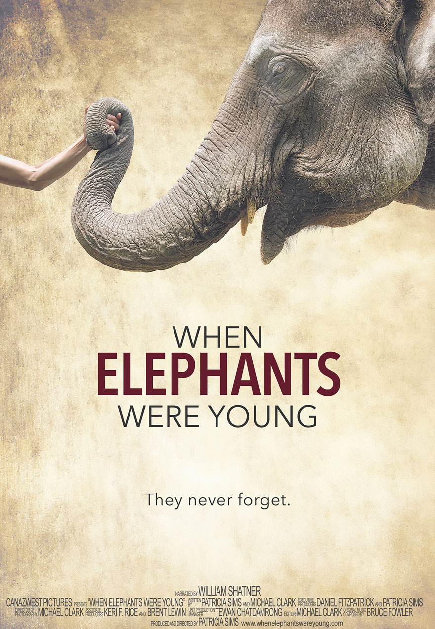 When Elephants Were Young poster acts as a link to the film