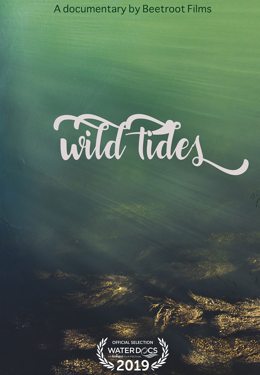 Wild Tides Poster of an underwater landscape acts as a link to the film page