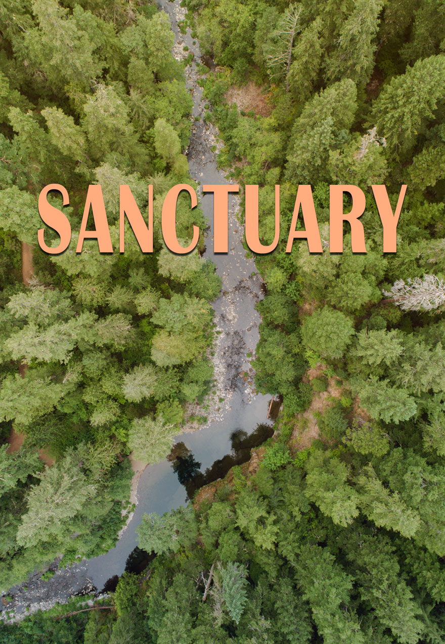 Sanctuary poster of a river running through a forest acts as a link to the film page