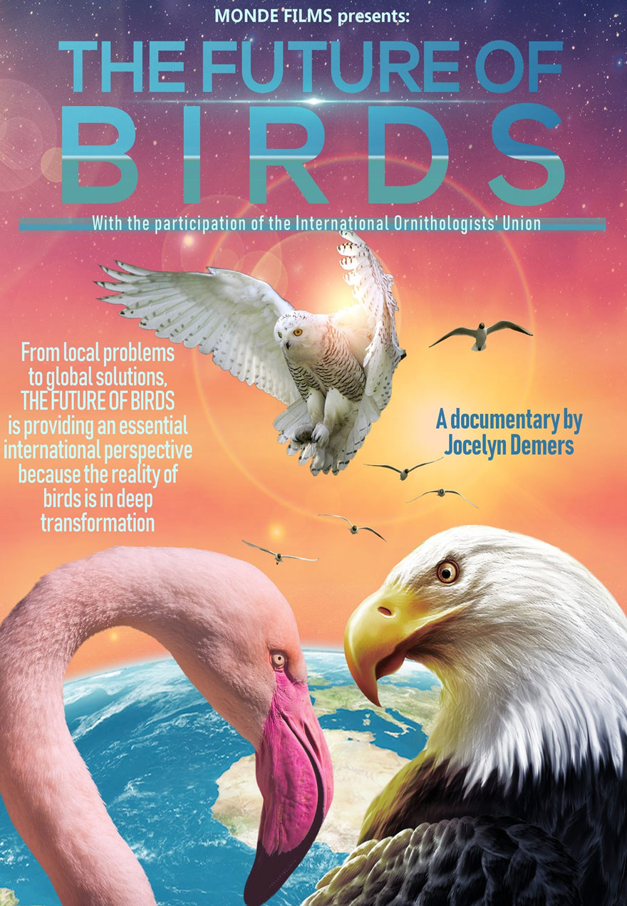 poster of a flamingo, bald eagle, owl, and other birds acts as a link to The Future of Birds film page