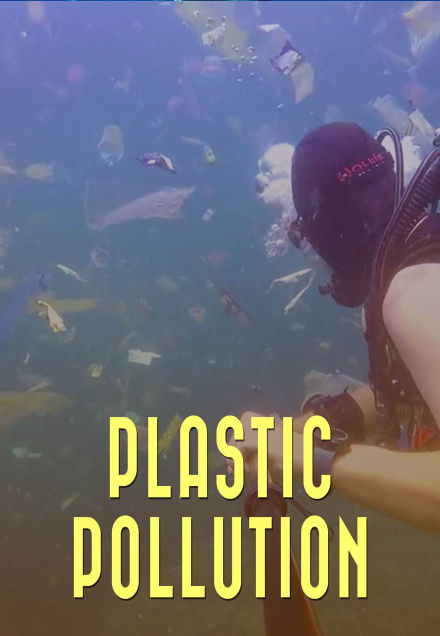Plastic Pollution poster of a scuba diver amongst plastic waste filled waters acts as a link to the film page