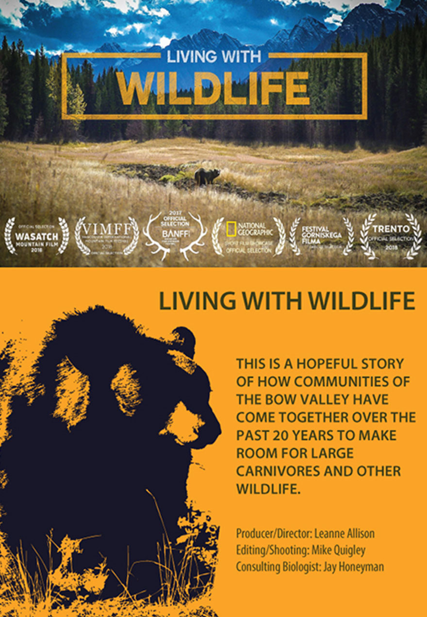 Poster of a bear against a backgrop of forest and mountains with the film title Living With Wildlife that acts as a link to the film page on The Green Channel